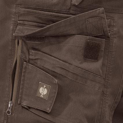 Work Trousers: Trousers e.s.motion ten + chestnut 2