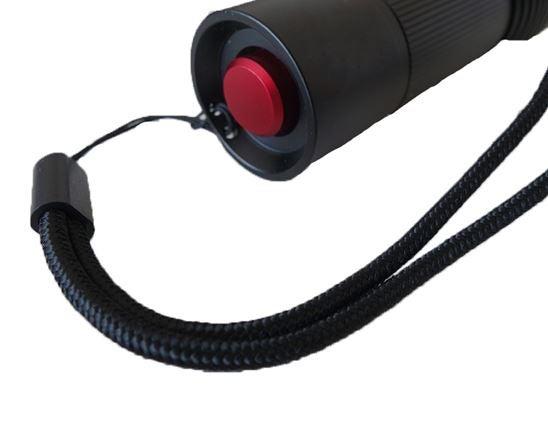 Lamps   lights: e.s. LED torch FL4 2