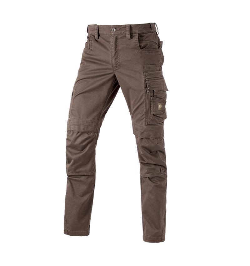 Work Trousers: Trousers e.s.motion ten + chestnut