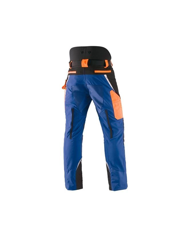 Work Trousers: e.s. Forestry cut protection trousers, KWF + royal/high-vis orange 2