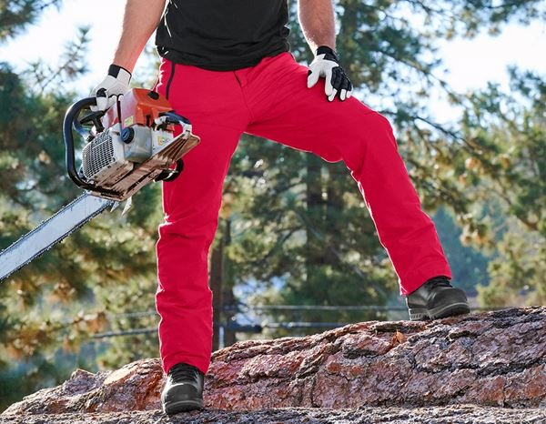 Work Trousers: Forestry cut protection trousers e.s.cotton touch + fiery red