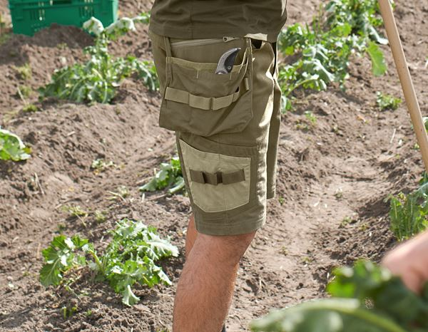 Work Trousers: Shorts e.s.concrete light + mudgreen/stipagreen 2